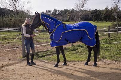 terapia-andulacion-caballos hhp horses of spain